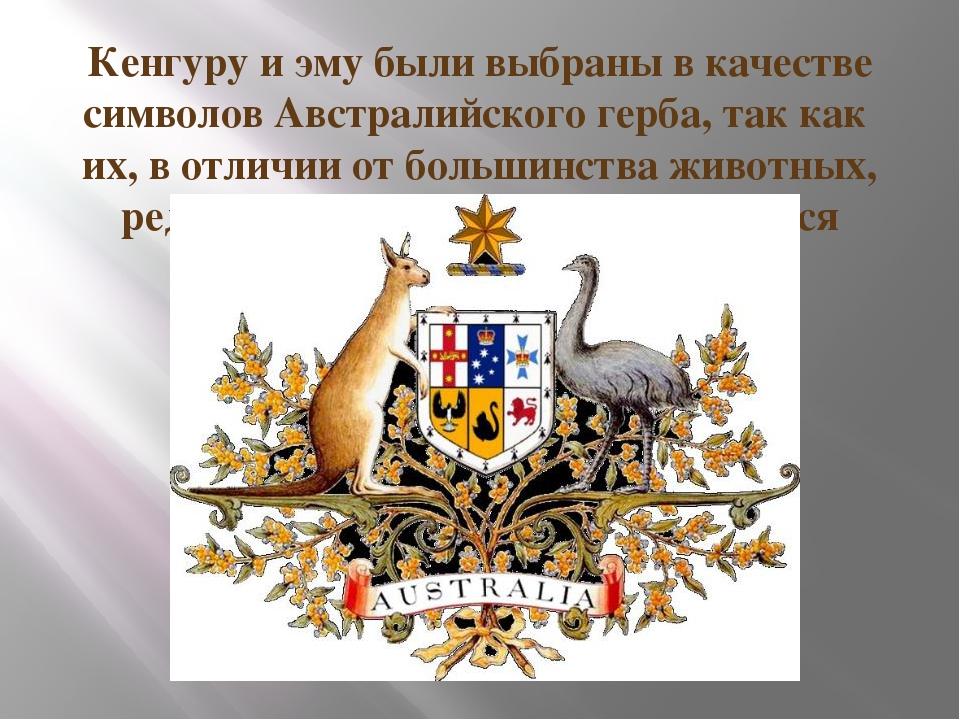Кенгуру и эму были выбраны в качестве символов Австралийского герба, так как...