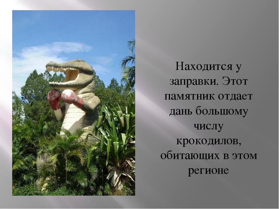 Находится у заправки. Этот памятник отдает дань большому числу крокодилов, об...